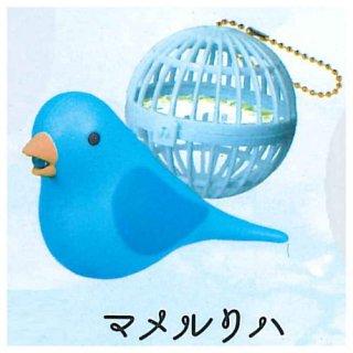 うたう小鳥ライト [2.マメルリハ]【 ネコポス不可 】