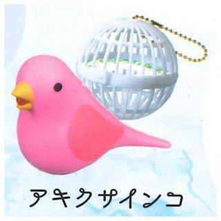 うたう小鳥ライト [3.アキクサインコ]【 ネコポス不可 】