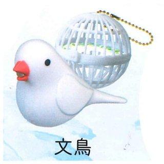 うたう小鳥ライト [4.文鳥]【 ネコポス不可 】