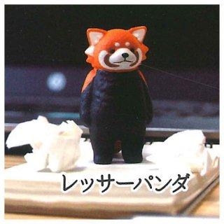 虚無。 [5.レッサーパンダ]【 ネコポス不可 】【C】
