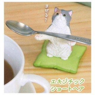 猫がお預かりします。 [2.エキゾチックショートヘア]【 ネコポス不可 】【C】