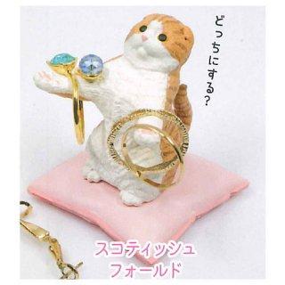 猫がお預かりします。 [4.スコティッシュフォールド]【 ネコポス不可 】【C】