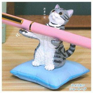 猫がお預かりします。 [5.アメリカンショートヘア]【 ネコポス不可 】【C】