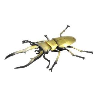 昆虫ハンター カブトムシ×クワガタ 2021 [5.メタリフェルホソアカクワガタ]【 ネコポス不可 】