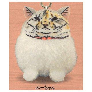 世にも不思議な猫世界 ぽってり!可愛いマスコット [1.みーちゃん]【 ネコポス不可 】【C】