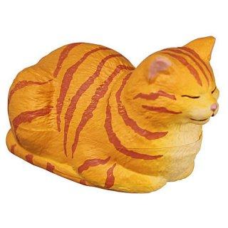 香箱座りの猫の小箱 その2 [1.茶トラ]【 ネコポス不可 】【C】