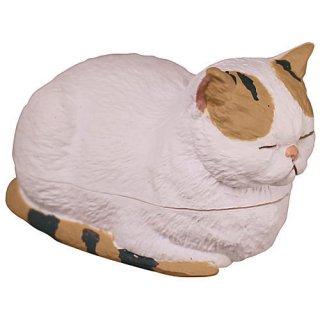 香箱座りの猫の小箱 その2 [3.エキゾチックショートヘア(ホワイト)]【 ネコポス不可 】【C】