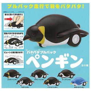 【全部揃ってます!!】パタパタ プルバック ペンギン [全6種セット(フルコンプ)]【 ネコポス不可 】【C】