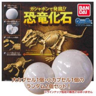 ガシャポンで発掘!恐竜化石 [大カプセル1個・小カプセル1個のランダム2個セット!何が出るかは削ってからのお楽しみ!!]【 ネコポス不可 】