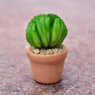 ミニチュアパーツ 鉢植えミニサボテン [CT2] (1/12スケール) [m-s]【ネコポス配送対応】【C】