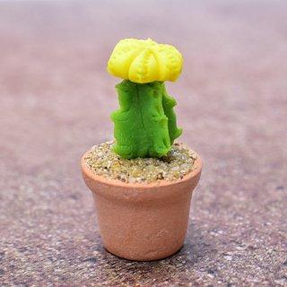 ミニチュアパーツ 鉢植えミニサボテン [CT6] (1/12スケール) [m-s]【ネコポス配送対応】【C】