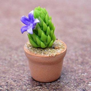 ミニチュアパーツ 鉢植えミニサボテン [CT8] (1/12スケール) [m-s]【ネコポス配送対応】【C】