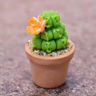 ミニチュアパーツ 鉢植えミニサボテン [CT9] (1/12スケール) [m-s]【ネコポス配送対応】【C】