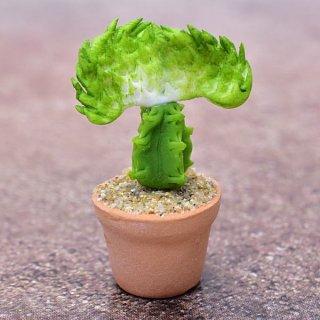 ミニチュアパーツ 鉢植えミニサボテン [CT12] (1/12スケール) [m-s]【ネコポス配送対応】【C】