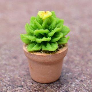 ミニチュアパーツ 鉢植えミニサボテン [CT20] (1/12スケール) [m-s]【ネコポス配送対応】【C】