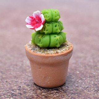 ミニチュアパーツ 鉢植えミニサボテン [CT23] (1/12スケール) [m-s]【ネコポス配送対応】【C】