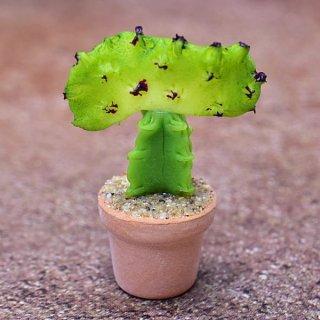 ミニチュアパーツ 鉢植えミニサボテン [CT28] (1/12スケール) [m-s]【ネコポス配送対応】【C】