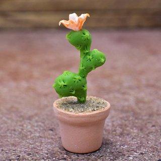 ミニチュアパーツ 鉢植えミニサボテン [CT29] (1/12スケール) [m-s]【ネコポス配送対応】【C】