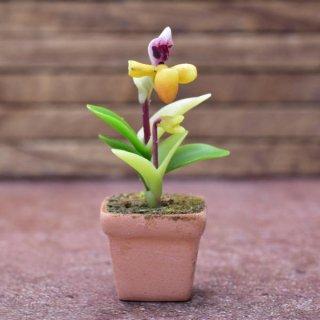 ミニチュアパーツ 鉢植え蘭(ラン) [ORP3] (1/12スケール) [m-s]【ネコポス配送対応】【C】