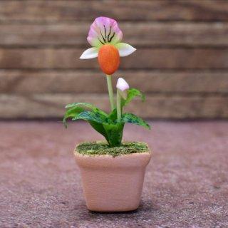 ミニチュアパーツ 鉢植え蘭(ラン) [ORP6] (1/12スケール) [m-s]【ネコポス配送対応】【C】