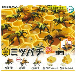 【全部揃ってます!!】Hani2(ハニハニ)本岡氏監修 ミツバチ [全5種セット(フルコンプ)]【 ネコポス不可 】【C】
