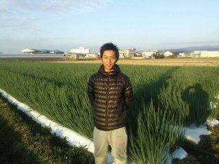 「京野菜 九条ネギ」 渋谷農園 約1kg(5袋)送料込