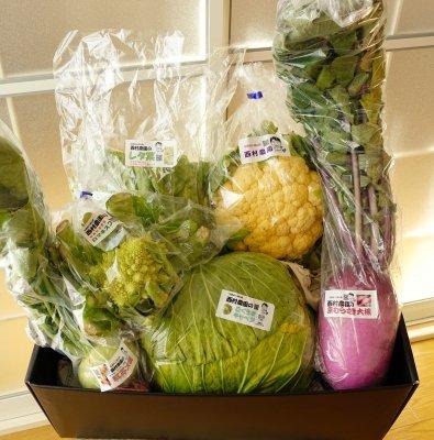 「西村さんのお野菜セット」京都 西村農園 送料込