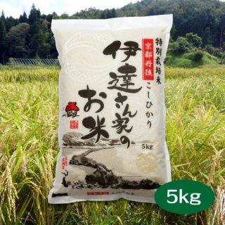 京都の美味しいお米 「伊達さんちのお米」京都 丹後こしひかり5kg 送料込