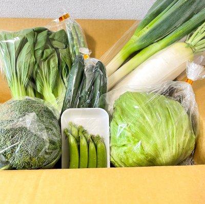 春の野菜を集めた大地の恵み「鳥取県 大山野菜セット」(送料込)