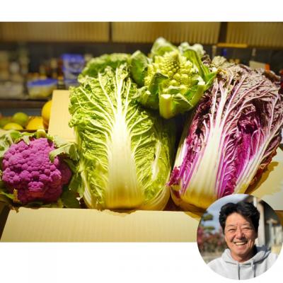 大きくて甘〜い白菜2個セット!京都で美味しい白菜が旬です!レストランでも大好評。おまけとは思えないお野菜つき!