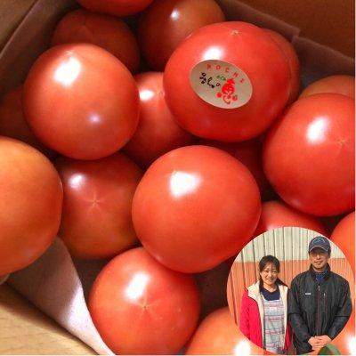 「うしの恵みトマト」 食の宝庫 高知県より 美味しいレギュラートマトです!2キロ・約15個(送料込)