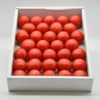 夜須フルーツトマト 2kg