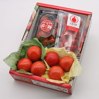 おすすめ高糖度トマトの詰め合わせ