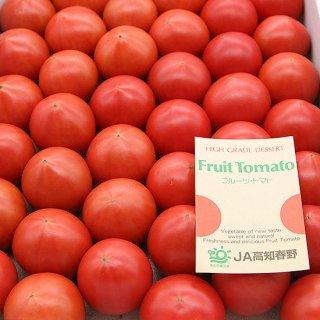 春野(諸木)フルーツトマト 2kg