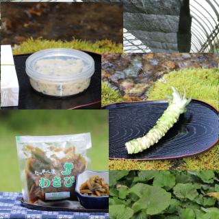 葵食品わさびセット C 【セット品サービス価格】(根わさびL1本 簡易包装たっそべ漬2種)