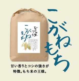 こがねもち【玄米2kg】