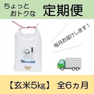 《※予約販売》 定期便 コシヒカリ 【玄米5kg】 全6ヵ月