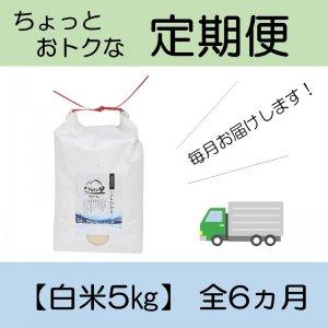 定期便 コシヒカリ 【白米5kg】 全6ヵ月