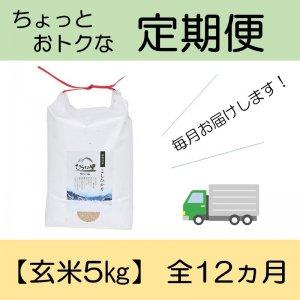 定期便 コシヒカリ 【玄米5kg】 全12ヵ月