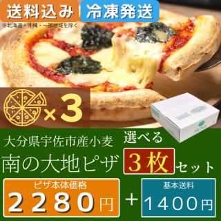 南の大地ピザ 選べる3枚+1枚セット