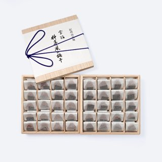 宝梅 料亭風の梅干 SAT-100