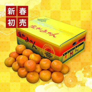 新春キャンペーン 蔵出しみかん 約5kg KM-50