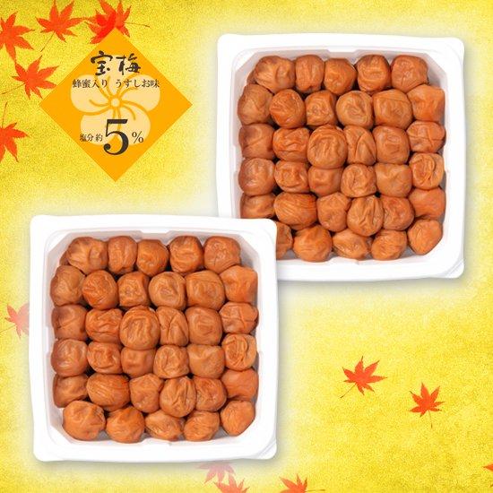 宝梅 塩分5% 蜂蜜入り 600g(増量パック)2パックセット EXT-55 商品画像