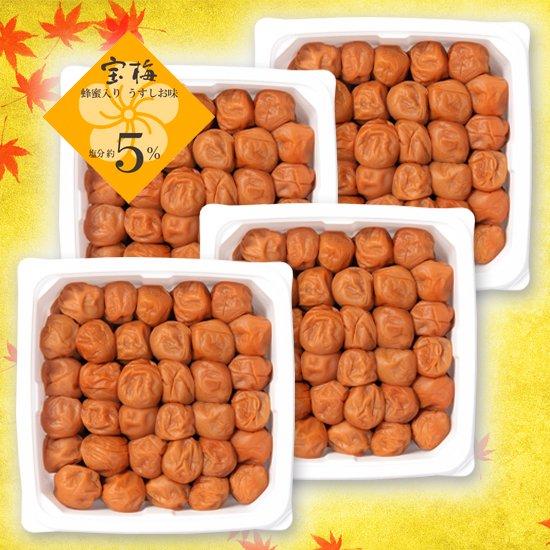 宝梅 塩分5% 蜂蜜入り 600g(増量パック)4パックセット EXT-100 商品画像