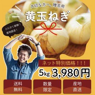 【浜松篠原産】黄たまねぎ 5kg 贈答用 送料無料