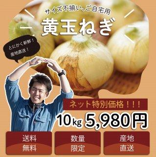 【浜松篠原産】黄たまねぎ 訳あり10kg 自宅用 送料無料