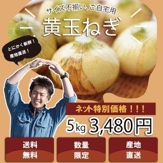 【浜松篠原産】黄たまねぎ 訳あり5kg 自宅用 送料無料