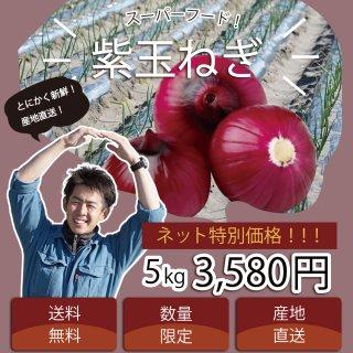 【浜松篠原産】紫たまねぎ 訳あり5kg 自宅用 送料無料