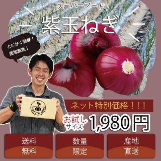 【浜松篠原産】紫たまねぎ お試し60サイズ 自宅用 送料無料 初回限定 1回限り