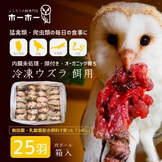 ウズラ25羽餌用 頭付き内臓未処理 オーガニック育ち【冷凍配送】